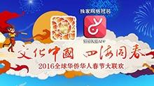 2016全球华人华侨春晚