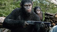 《<B>猩</B><B>球</B><B>崛起</B><B>2</B>》片段:凯撒发现人类藏枪 信任土崩瓦解