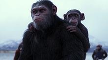 《猩球崛起》三部曲混剪 看猿王凯撒王者争霸路
