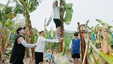 郭麒麟爬树割香蕉