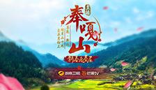 新春走基层·直播奉嘎山